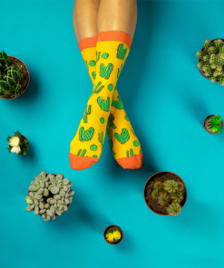 Cactus Socks Sockgaim Aqua Yellow Green